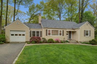 Mountain Lakes Boro Single Family Home For Sale: 136 Ball Rd