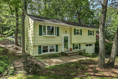 Martinsville Single Family Home For Sale: 1295 Evergreen Dr