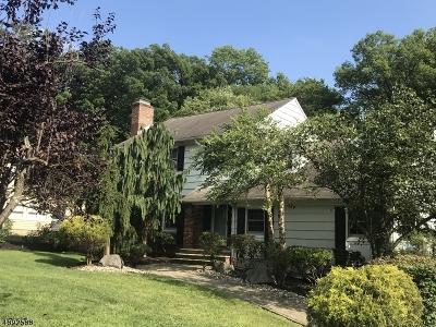 Scotch Plains Twp. Single Family Home For Sale: 2682 Sky Top Dr