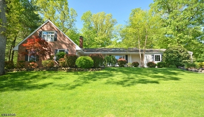 Bridgewater Twp. Single Family Home For Sale: 1203 Evergreen Dr