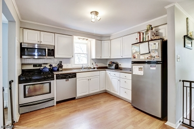 Parsippany-Troy Hills Twp. Single Family Home For Sale: 48 Pitman Pl