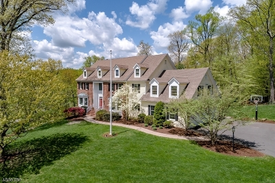 Bernardsville Boro NJ Single Family Home For Sale: $1,158,000