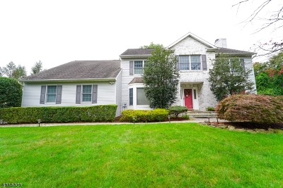 East Hanover Twp. Single Family Home For Sale: 10 Norwood Rd