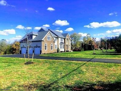Hillsborough Twp. Single Family Home For Sale: 253 Hillsborough Rd
