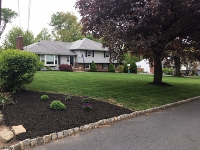 Florham Park Boro Single Family Home For Sale: 12 Midwood Dr