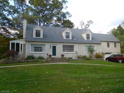 Warren Twp. Single Family Home For Sale: 21 Brookside Dr