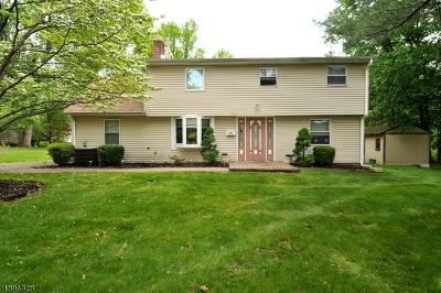 Bridgewater Twp. Single Family Home For Sale: 305 Nagle St