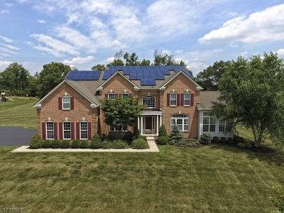 Raritan Twp. Single Family Home For Sale: 2 Demott Rd