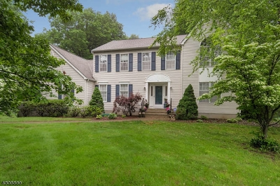 Randolph Twp. Single Family Home For Sale: 10 Memory Ln