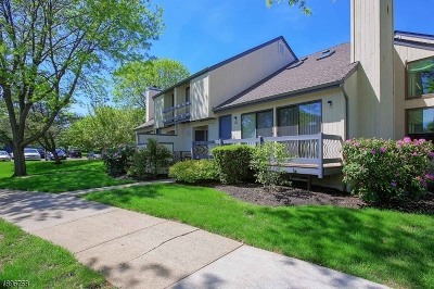 Bernards Twp. Condo/Townhouse For Sale: 247 Crabtree Ct