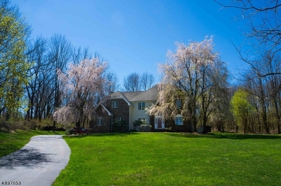 Hunterdon County Single Family Home For Sale: 6 Apgar Farm Rd