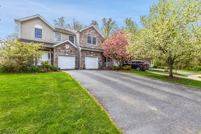 Parsippany Condo/Townhouse For Sale: 109 Rhyan Dr