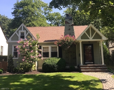 WestField Single Family Home For Sale: 953 Summit Ave