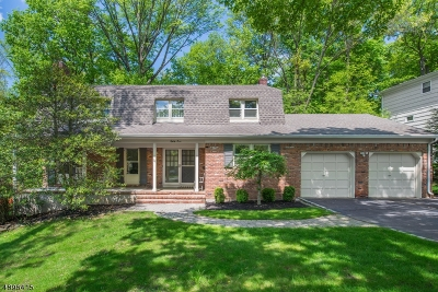 Berkeley Heights Single Family Home For Sale: 83 Webster Dr