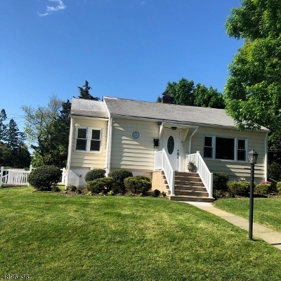 Parsippany-Troy Hills Twp. Single Family Home For Sale: 41 Longview Ave
