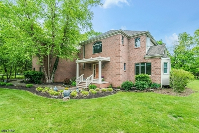 Montgomery Twp. Single Family Home For Sale: 43 Brandywine Rd