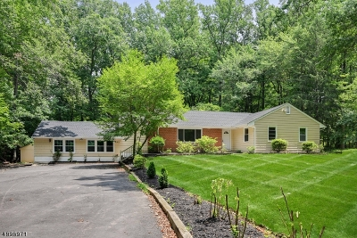 Montgomery Twp. Single Family Home For Sale: 923 Cherry Hill Rd