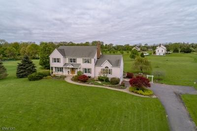 Glen Gardner Boro, Hampton Boro, Lebanon Twp. Single Family Home For Sale: 38 Forge Hill Rd