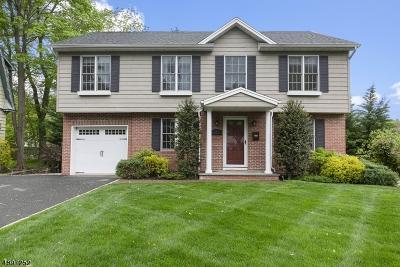Madison Boro Single Family Home For Sale: 8 Niles Ave