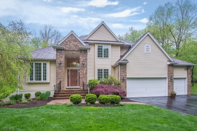 Randolph Twp. Single Family Home For Sale: 9 Bellatrix Rd