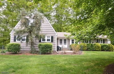 East Hanover Twp. NJ Single Family Home For Sale: $549,000
