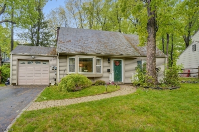 Livingston Twp. Single Family Home For Sale: 38 Crest View Hill Rd