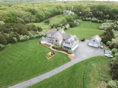 Fredon Twp. Single Family Home For Sale: 17 Fredon-Marksboro Rd