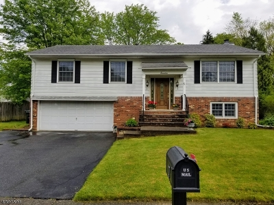 Mount Olive Twp. Single Family Home For Sale: 17 Clover Hill Dr