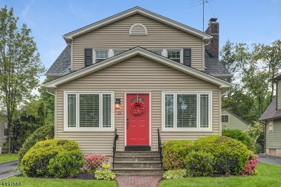 Springfield Twp. Single Family Home For Sale: 21 Henshaw Ave