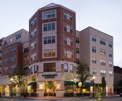 Montclair Twp. Condo/Townhouse For Sale: 48 S Park St #222