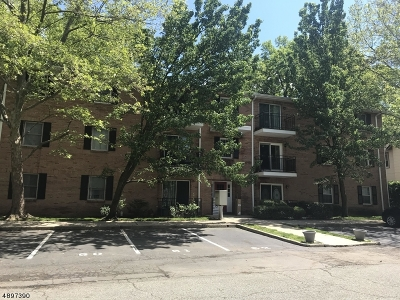 Bloomfield Twp. Condo/Townhouse For Sale: 45 John St Apt 3d
