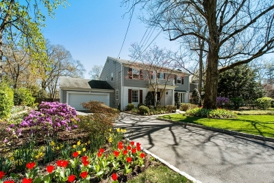 Westfield Town Single Family Home For Sale: 250 E Dudley Ave