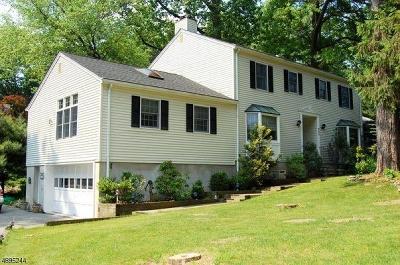 Boonton Town Single Family Home For Sale: 642 Cornelia St