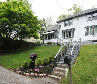 High Bridge Boro Single Family Home For Sale: 16 Tisco Ave