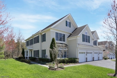 Tewksbury Twp. Condo/Townhouse For Sale: 1101 Farley Rd