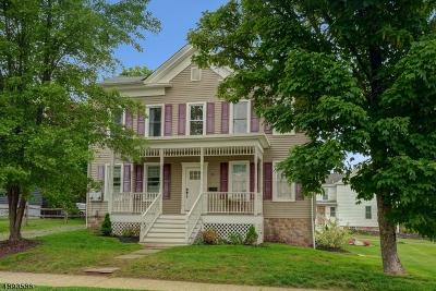 Flemington Boro Multi Family Home For Sale: 20 Pennsylvania