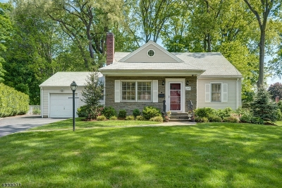 Mountainside Single Family Home For Sale: 266 Old Tote Rd