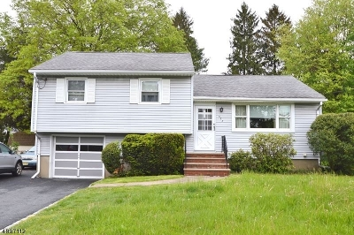 Single Family Home Active Under Contract: 533 Ridgedale Ave