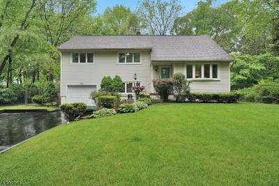 Morristown Town, Morris Twp. Single Family Home For Sale: 4 Maxine Dr