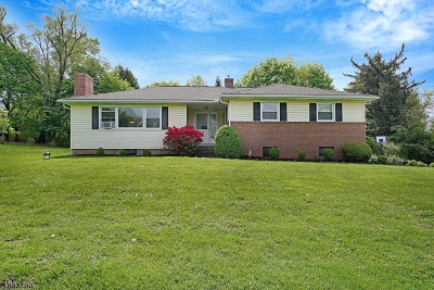 Bridgewater Twp. Single Family Home For Sale: 1370 Meiners Drive