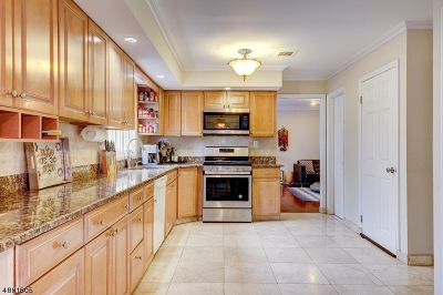Parsippany-Troy Hills Twp. Single Family Home For Sale: 60 Whitewood Dr