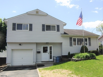 Parsippany-Troy Hills Twp. Single Family Home For Sale: 113 1/2 Hiawatha Blvd