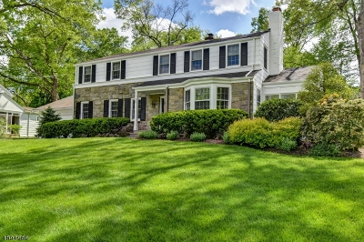 Chatham Boro Single Family Home For Sale: 55 Fairview Ave