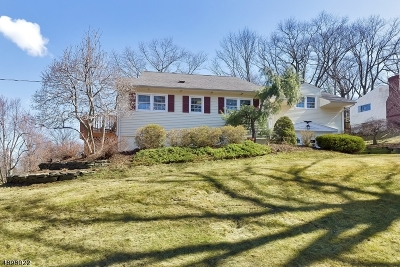 Berkeley Heights Single Family Home For Sale: 6 Warren Pl