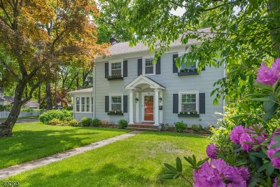 Morristown Single Family Home For Sale: 115 Washington Ave