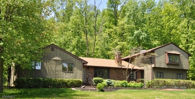 Hillsborough Twp. Single Family Home For Sale: 247 E Mountain Rd