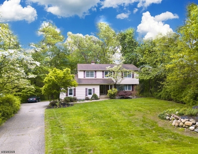 Montville Twp. Single Family Home For Sale: 16 Mac Leay Rd