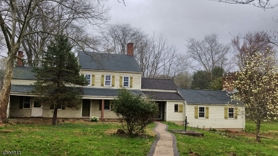 Whitehouse Station Single Family Home For Sale: 602 County Road 523