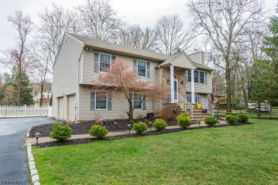 Chatham Twp. Single Family Home For Sale: 12 Evergreen Rd