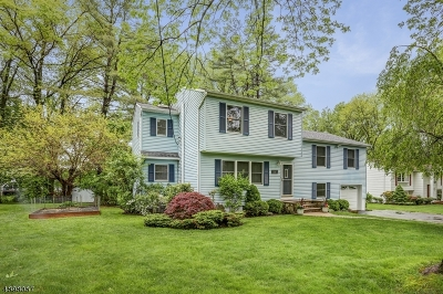 Hanover Twp. Single Family Home For Sale: 45 Crescent Dr